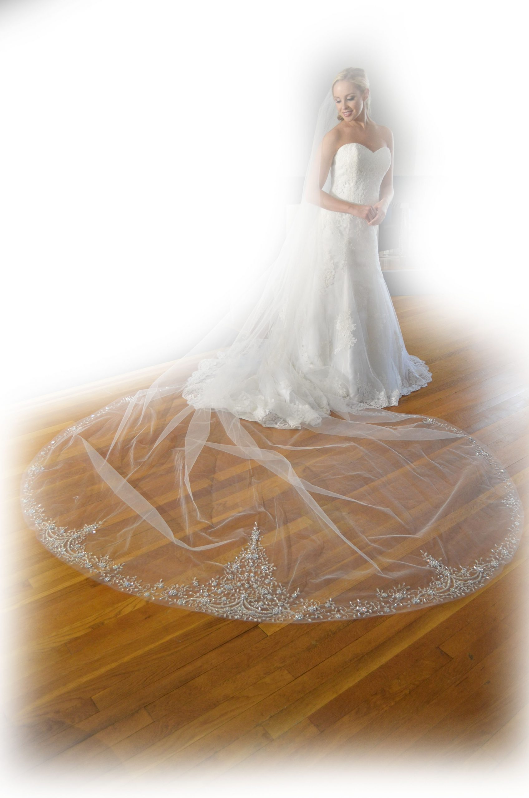 Elena E1211  Cathedral length veil with heavily embellished edge with silver embroidery, silver beading, & rhinestones.