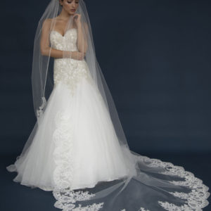Long Lattice lace Cathedral veil.