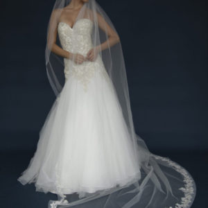 Long Horsehair edge veil with lace appliques.