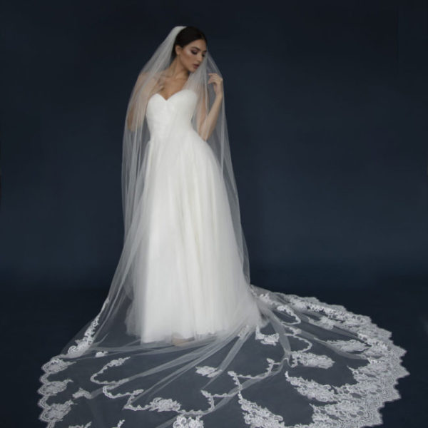 Long Lace edge Cathedral veil